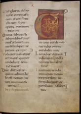 rukopisi_43